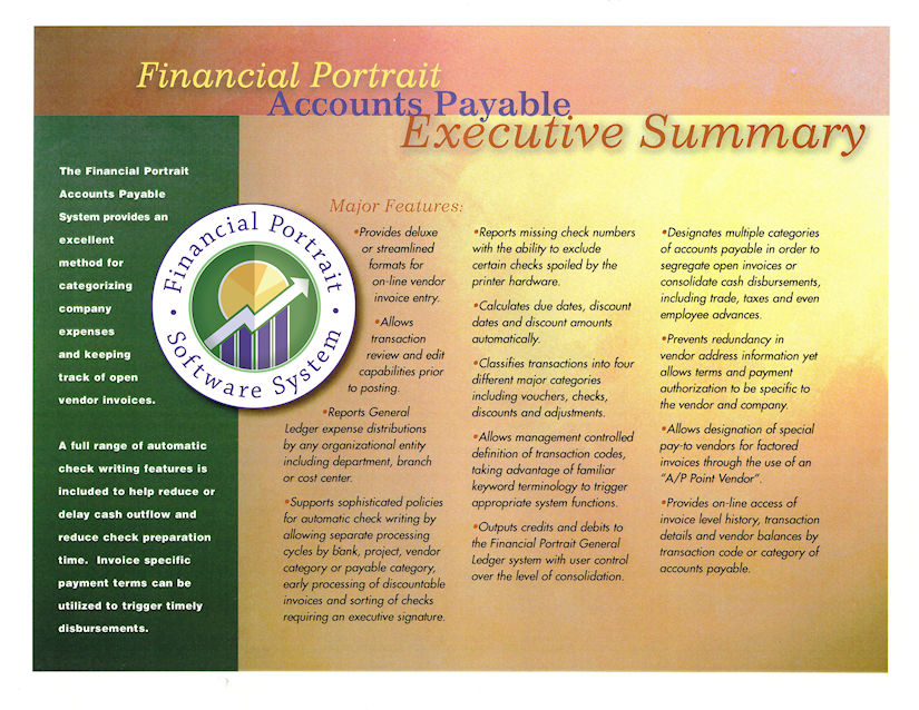 Financial Portrait Accounts Payable Executive Summary